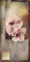 Hibiscus in White I Fine-Art Print
