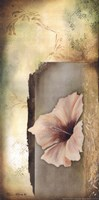 Hibiscus in White II Fine-Art Print