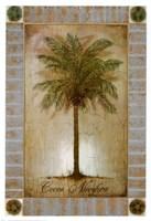 Cocos Nucifera Fine-Art Print