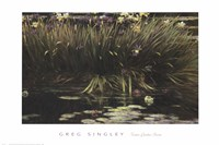 Water Garden Secret Fine-Art Print