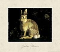The Hare Fine-Art Print