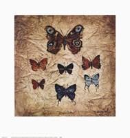 Papillons II Fine-Art Print