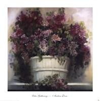 Lilac Gathering Fine-Art Print