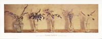 Plantas Aromticas Fine-Art Print