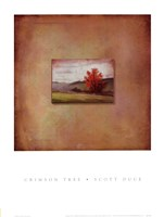 Crimson Tree Fine-Art Print