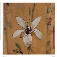 Camillo Fine-Art Print