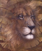 Safari Lion Fine-Art Print