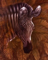 Safari Zebra Fine-Art Print