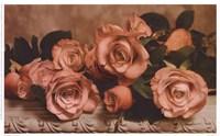 Dusty Rose Fine-Art Print