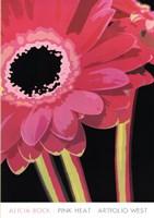 Pink Heat Fine-Art Print