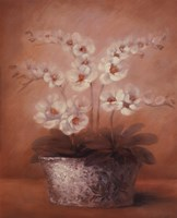 Abigail Fine-Art Print