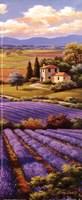 Fields Of Lavender I Fine-Art Print