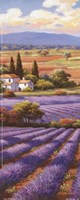 Fields Of Lavender II Fine-Art Print