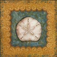 Sanibel Sanddollar Fine-Art Print