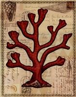 Red Coral IV Fine-Art Print
