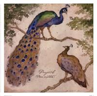 Peafowls Fine-Art Print