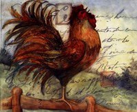 Le Rooster I Fine-Art Print