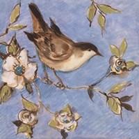 Native Finch I Fine-Art Print