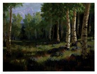 Aspen Meadow Fine-Art Print