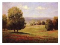 Red Meadow II Fine-Art Print