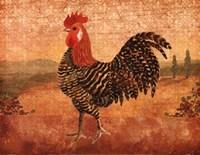 Florentine Rooster I Fine-Art Print