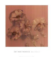 Ghost Flowers I Fine-Art Print