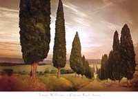 Cypress Road, Siena Fine-Art Print