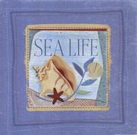 Sea Life Fine-Art Print