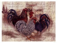 Rooster Trinity Fine-Art Print