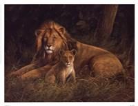 Lion And Cub Fine-Art Print