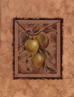 Citron Fructus Fine-Art Print