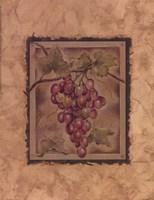 Raisin Fructus Fine-Art Print