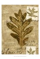 Leaf Collage I Fine-Art Print