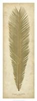 Sago Palm I Fine-Art Print