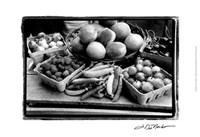 Farmer's Market I Fine-Art Print