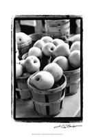 Farmer's Market IV Fine-Art Print