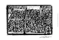 Farmer's Market VI Fine-Art Print