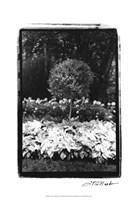 Garden Hideaway II Fine-Art Print