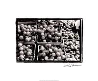 Farmer's Market V Fine-Art Print