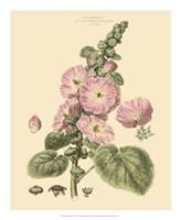 Blushing Pink Florals V Fine-Art Print