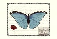 Butterfly Prose IV Fine-Art Print