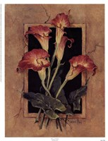Framed Calla's Fine-Art Print