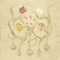 Dancing Bulbs II Fine-Art Print