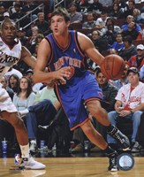 Danilo Gallinari 2008-09 Action Fine-Art Print