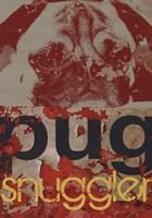 Pug Snuggler Fine-Art Print