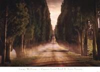 Cypress Lined Road II, Siena Tuscany Fine-Art Print