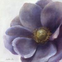 Contemporary Anemone Fine-Art Print