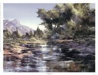 Oak Creek Morning Fine-Art Print