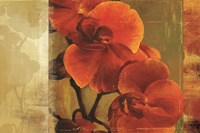 Crimson Delight Fine-Art Print
