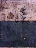 Verde De Manzana Fine-Art Print